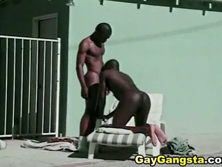 Black Gay Studs Suck Fuck increased by Cummed