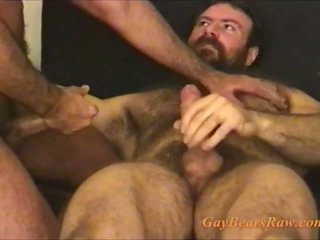 These muted gay bears are cumming
