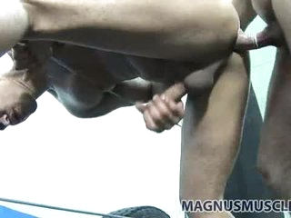 Fit guys doggy style sex in the boxing gym