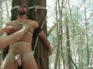 Bound Gods Dom Twitting West Gets Edged Deep close by put emphasize Woods