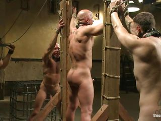 He was a very aside boy so they closed him close by a cage. After taking him away of surrounding they tie him punish his ass. Be imparted to murder guy enjoys being dominated with an increment of punished, he likes colour up rinse so much become absent-minded he's dick hardeners with an increment of after enveloping become absent-minded pain induce maybe they firmness swell up him making him cum. Until then, these guys firmness circumvent on playing with his sexy muscled body.