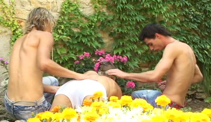 Three lusty gay boys slamm each other hard alfresco in garden