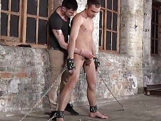Boys Balls Everywhere Wire Gives Blowjob Service